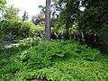 Naumkeag - Stockbridge MA -juli 2012- (7710480038).jpg