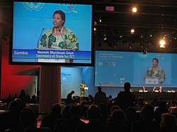 Neneh MacDouall-Gaye - world summit on the information society.jpg