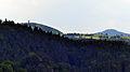 Neuer Wildenstein - Nationalpark Sächsische Schweiz 06.JPG