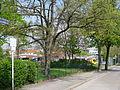 Nordlichtstraße (Berlin-Reinickendorf).JPG