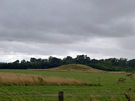 Normanton Down - geograph.org.uk - 4119376.jpg
