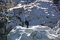 Oboke Gorge 大步危峽 - panoramio.jpg
