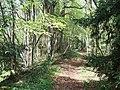 Offa's Dyke - Tidenham Section - geograph.org.uk - 167307.jpg