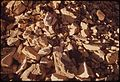 Oil Shale. It Is the Kerogen in This Rock Which When Heated to 900 F., Yields Oil, 10-1972 (3815023393).jpg