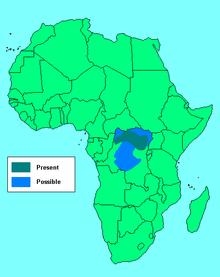 Okapi - Wikipedia, the free encyclopedia