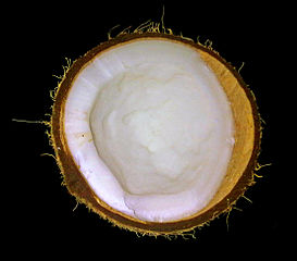 A photo of half a coconut