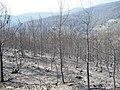 Osmanlarda yangın beydağı - panoramio.jpg
