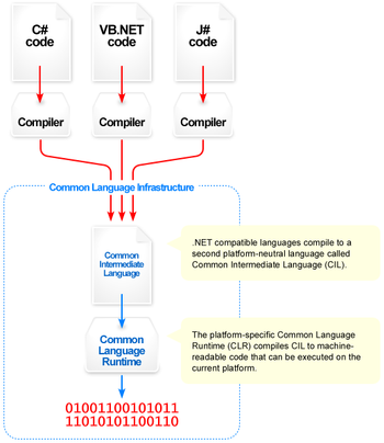 Visual overview of the Common CLR Language Inf...