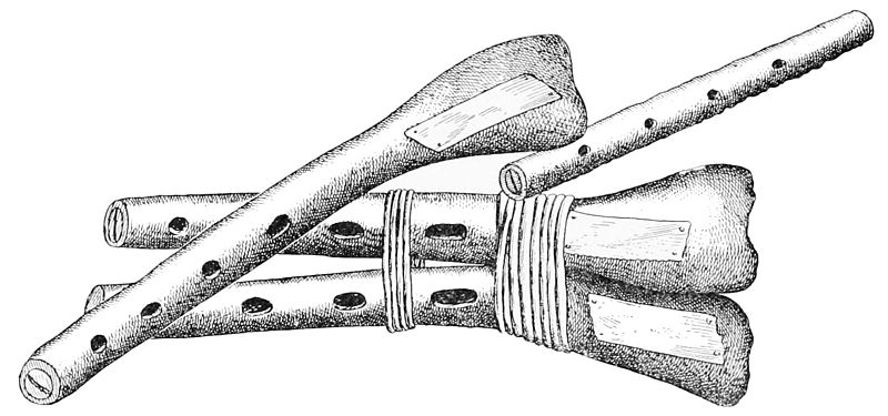 File:PSM V48 D732 Musical instruments found on san clemente 1895.jpg