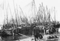 PSM V59 D559 Concarneau fishing fleet discharging catch of the day.png