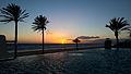 Palm Trees & The Mediterranean Sea at Sunset (12195912913).jpg