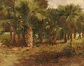 Palmettos in City Park New Orleans 1900 by Bror Anders Wikstrom.jpg