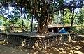 Panchu pandav caves , bhubaneswar - 1.jpg