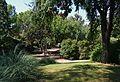 Parc de Benicalap, arbres.JPG