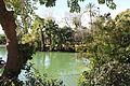 Parc de la Ciutadella IMG 1621.JPG