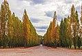 Park of Versailles IMG 4960-Edit (43545349224).jpg