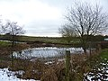 Partly frozen dewpond near Tissington - geograph.org.uk - 1634551.jpg