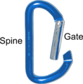 Parts of Carabiner.png