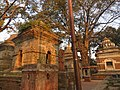 Pashupatinath Temple Nepal IMG 16088463 23.jpg