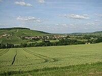 Passy-sur-Marne vue de Reuilly.jpg