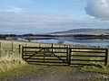 Path leading to Threipmuir Reservoir, with Harbour Hill beyond - geograph.org.uk - 124992.jpg
