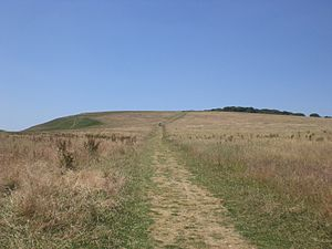 Tennyson Trail - The public footpath leading up Tennyson Down