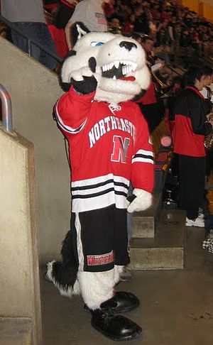 Paws (Northeastern) - Paws, Northeastern Mascot
