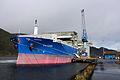 Pelicana (3961864479).jpg
