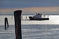 Pellestrina (Lagune de Venise) (8087797345).jpg