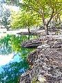 Perrine Wayside Park 07.jpg