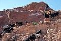 Petra البتراء (2475501063).jpg