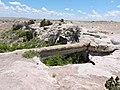 Petrified bridge - panoramio.jpg