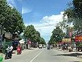 Phạm Hùng,Bình Hưng, Bình Chánh, hcmvn - panoramio.jpg