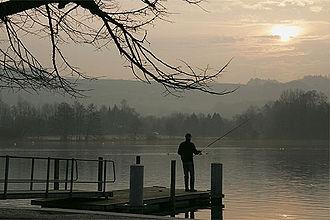 Lake Sempach - Image: Picswiss LU 20 42