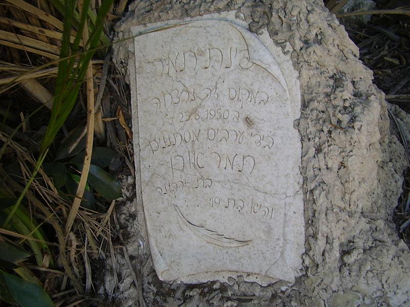 אבן זיכרון לתמר אורן בפרדס במושב ירקונה