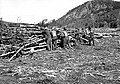Piling old dead wood for burning. North end of Jackson Lake near the Snake River outlet. CCC (Civilian Conservation Corps) camp (a9fb65cf881241a99897bd07aed2551e).jpg