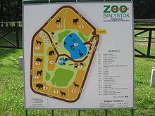 Zoo białystok cennik