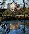 Pond, ducks, Gormenghast - geograph.org.uk - 1197534.jpg