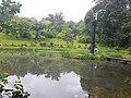 Pond View 20170706 160712.jpg