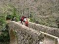 Pont de Salgueda DSCN1061.jpg