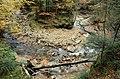 Potok Jaworzyna, Babiogórski Park Narodowy - panoramio.jpg