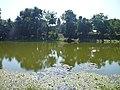 Prasat Bakong 2 - panoramio.jpg