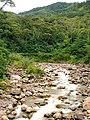 Quinimari.jpg