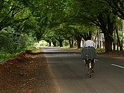 Quite Road Coimbatore