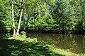 Réserve naturelle régionale des étangs de Bonnelles le 26 mai 2017 - 20.jpg