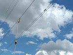 REN overhead power line maintenance PT 2018 C.jpg
