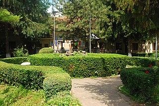 Pogoanele Town in Buzău, Romania