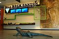 Red Rock Canyon National Conservation Area Visitor Center exhibit (20852876250).jpg