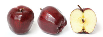 Red Delicious - Image: Red delicious and cross section