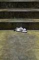 Reebok shoe, Edinburgh, Scotland, GB, IMG 3712 edit.jpg
